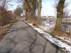WAAARTET.... alter Hund ist gerade mal kein D-Zug